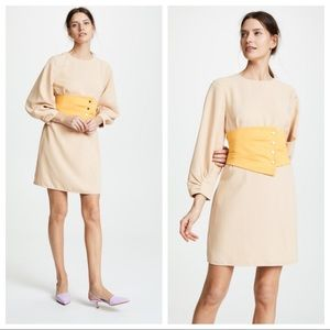 Tibi Gathered Sleeve Corset Fit And Flare Dress